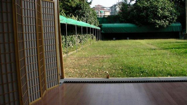 Shajo del Dojo del Kyudo Club Torino